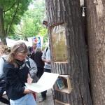 book-forest-bookshelf-trees-in-berlin-5