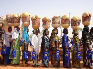 niger2012