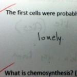 test-answer4